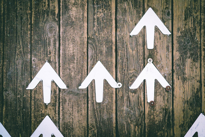 Four Equations Explain Organisational Success