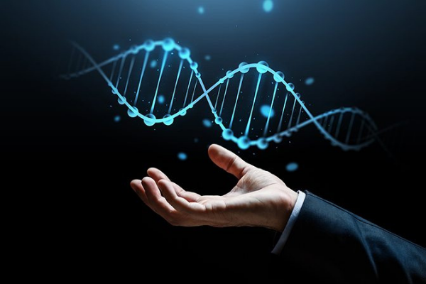 Embedding Appetite into Your DNA